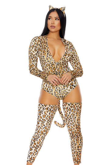 Naughty Kitty Sexy Costume