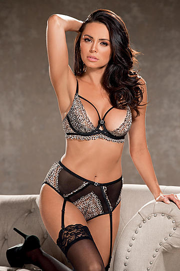 Leopard Stretch Lace High Waisted Panty