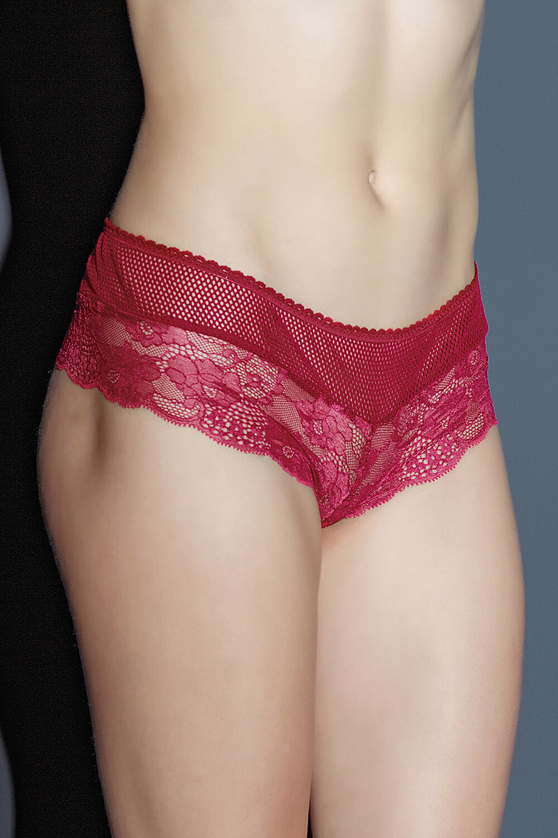 Scalloped Stretch Lace Booty Short