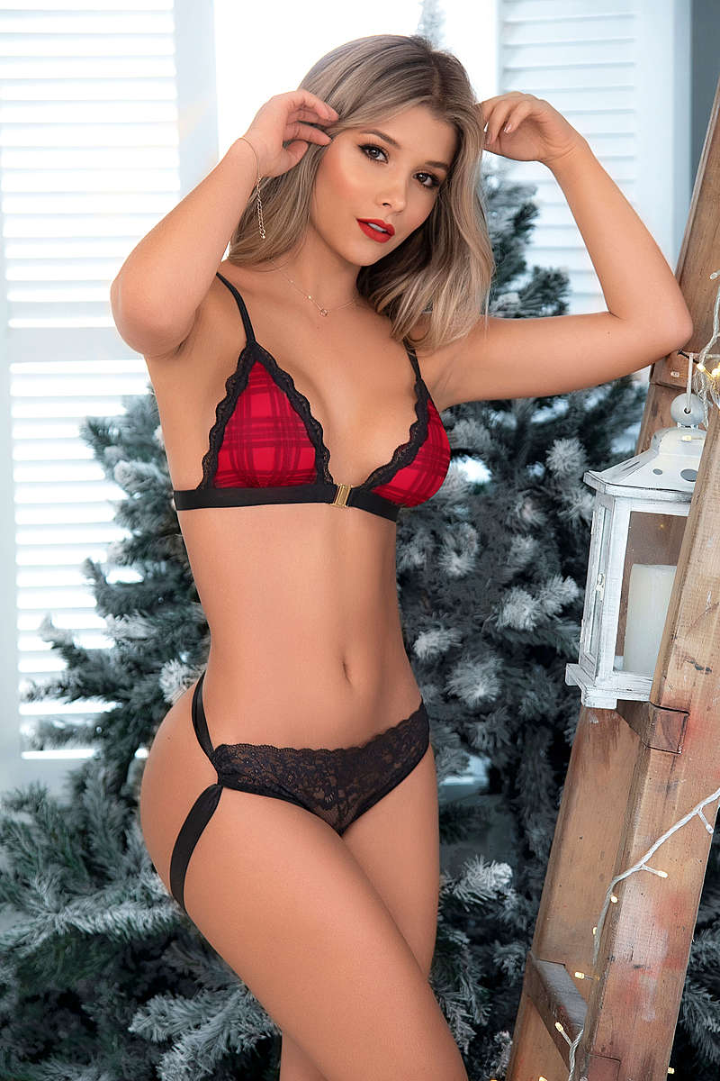 Sexy Holidays Lingerie Set