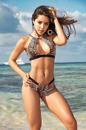 Leopardess Two Piece Swimsuit