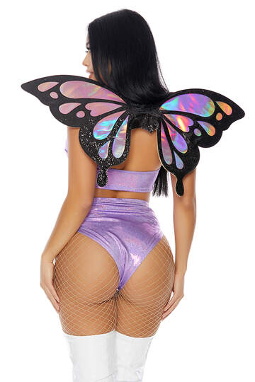 Iridescent Butterfly Wings